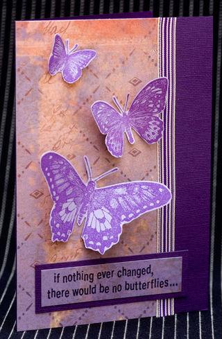 Butterflies_1