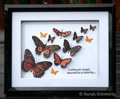Butterflyshadowboxframe