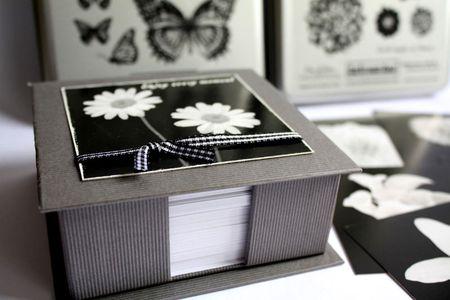 IMG_9252-box