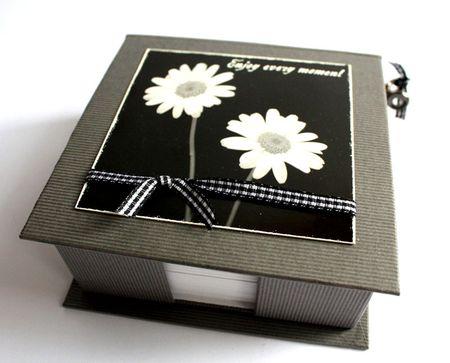 IMG_9269-box