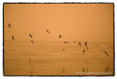 DustStorm_Lake