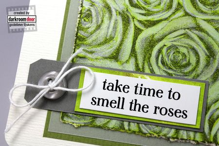 Roses_05