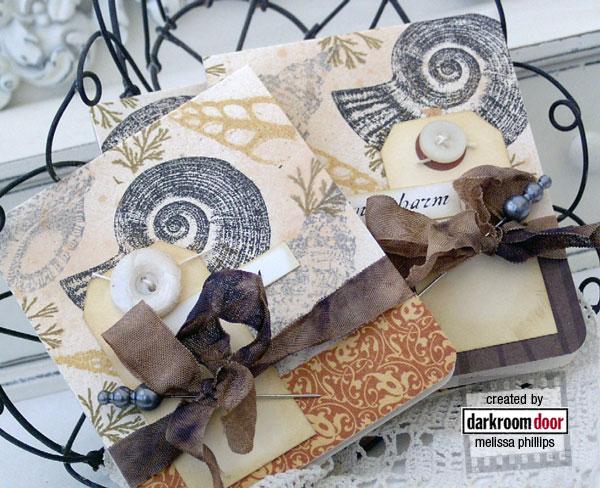 DDRS055_Seashells_Melissa_2