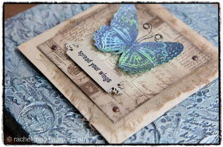 ButterflyCanvas_RachelGreig_4