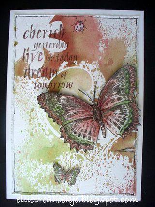 Roodgroen-DD-vlinder---(2)